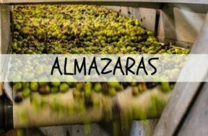 ALMAZARAS DE ACEITE DE OLIVA