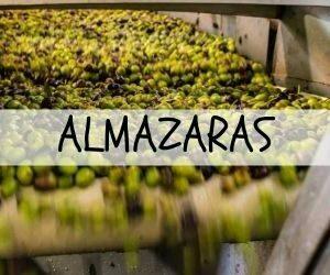 Almazaras y marcas de Castilla La Mancha